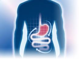 Gastroentérologie